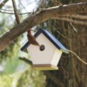 bird-house-2